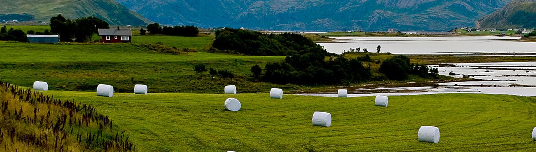 AgriWrap Eco