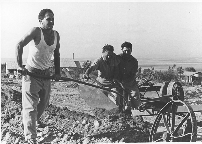 verktyg jordbruk