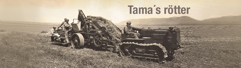 Tama Lantbruks Roots